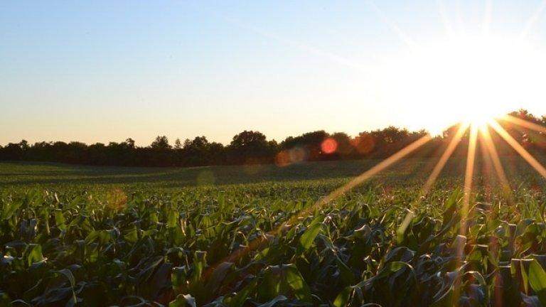 Държавната помощ за преотстъпване на корпоративен данък за земеделските стопани се удължава до края на 2022 г.