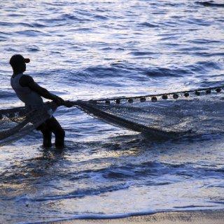 fisherman-wnet