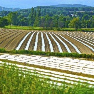 Субсидиите за земеделските стопани ще се изплащат по-рано от обичайното