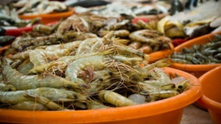 fish-market-1433484-m